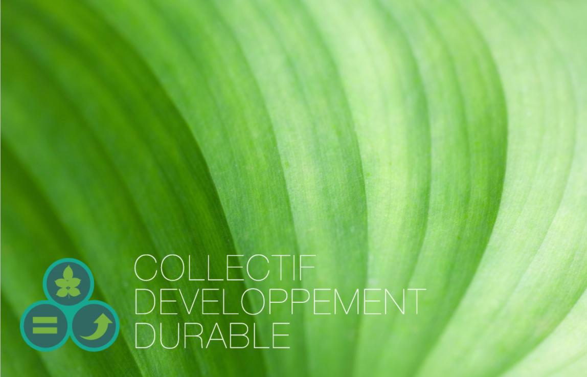 Eco-déco : Valeur sûre pour une décoration d'intérieur éco-responsable