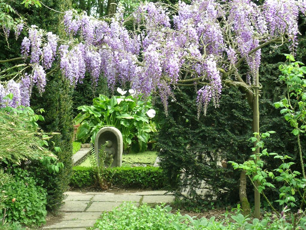 accueil jardin zen les jardins du botrain mur de bretagne. Black Bedroom Furniture Sets. Home Design Ideas
