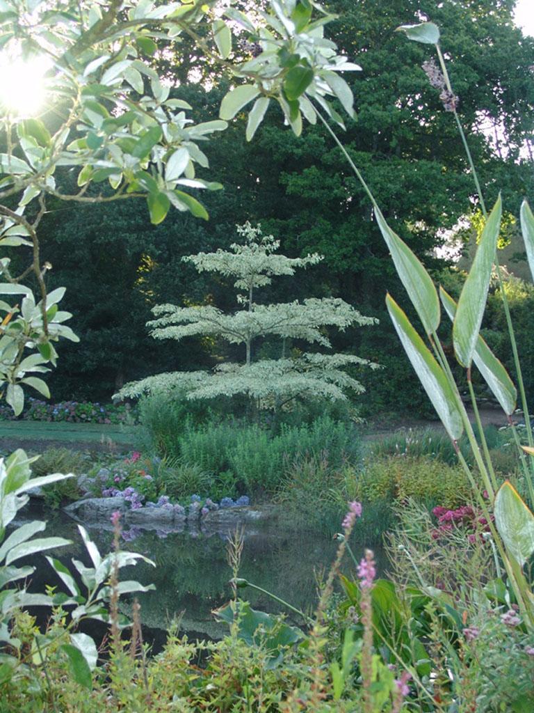Parc botanique de cornouaille 29120 combrit jardin - Jardin botanique de cornouaille ...