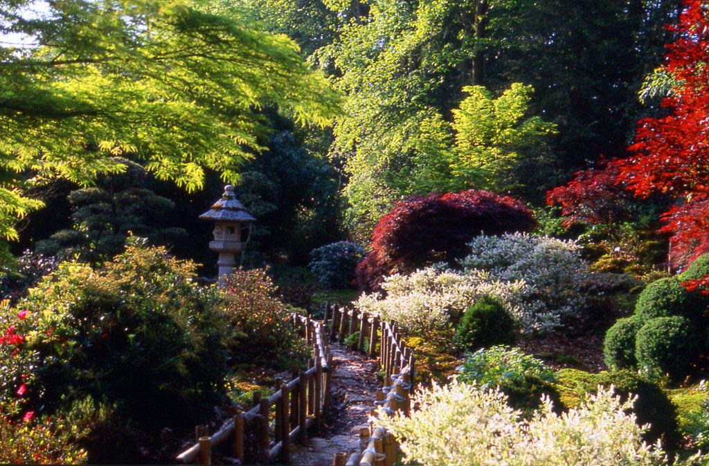 Parc floral de haute bretagne 35133 le chatellier jardin - Parc botanique de haute bretagne ...