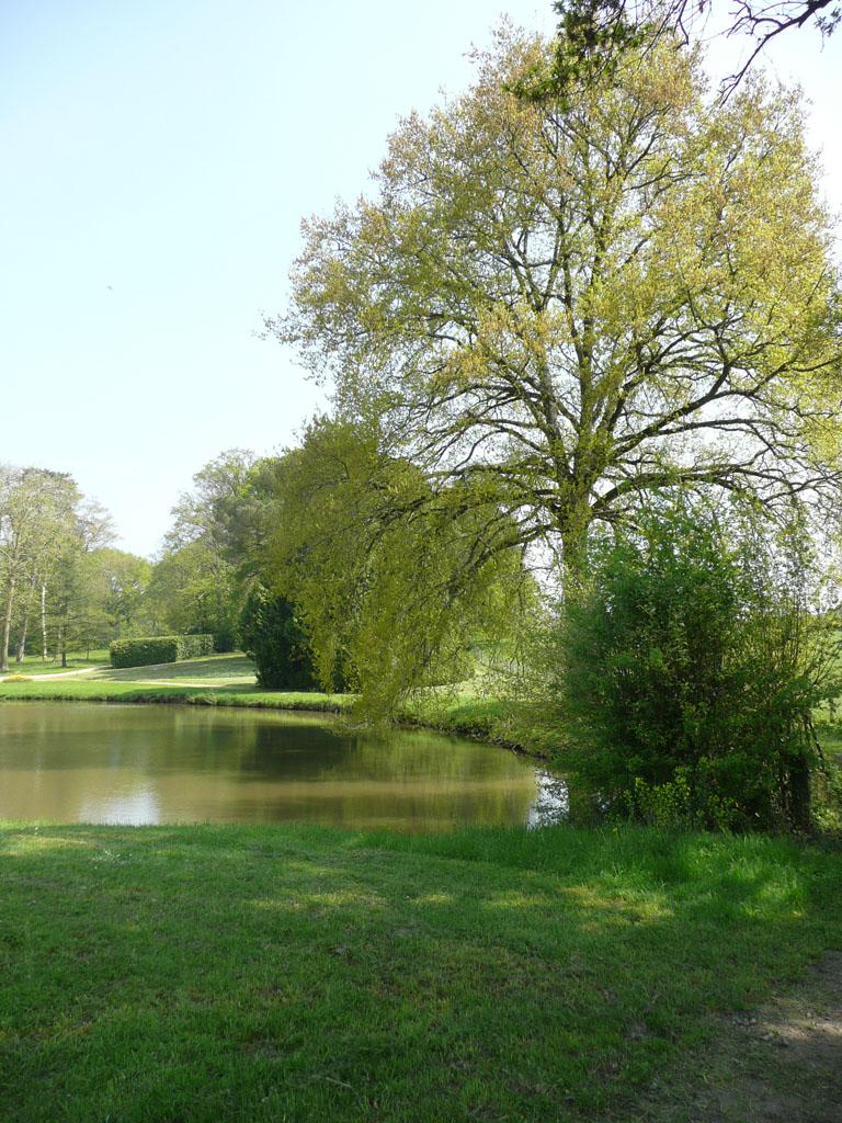 Parc et jardins du ch teau de montriou 49460 feneu for Entreprise parc et jardin