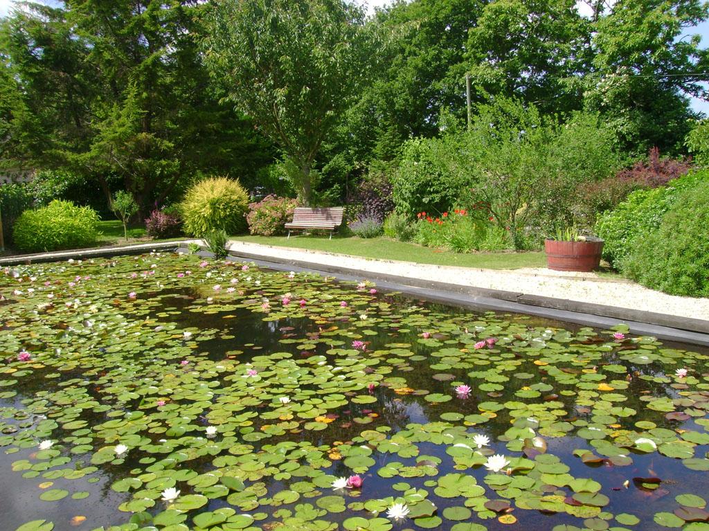 Jardin zen img for Decoration jardin zen